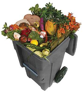 Food Scrap Cart